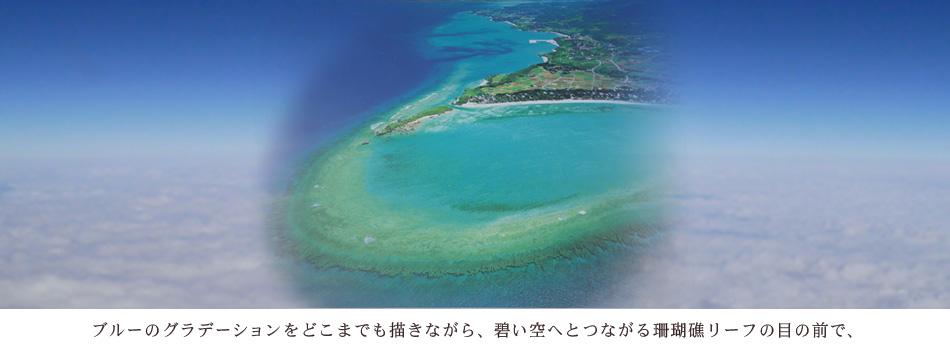 ブルーのグラデーションをどこまでも描きながら、碧い空へとつながる珊瑚礁リーフの目の前で、